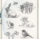 joy craft clearstamps